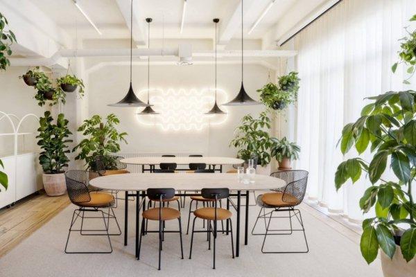 Beplanting, hangende planten, staande planten. vergadertafels, vergaderstoelen, lampen, gordijnen.